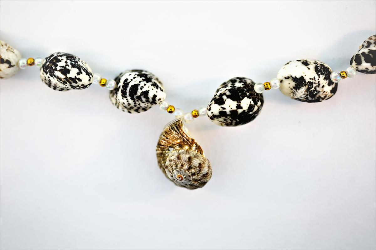 Shell Assorted Necklace